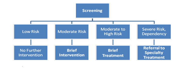 An organizational tree outlining levels of risk and suggested follow-up based on the results of the SBIRT a screening measure. The categories from left to right are low risk resulting in no further interventions, moderate risk resulting in brief intervention, moderate to high risk resulting in brief treatment, and severe risk/dependency resulting in referral to specialty treatment.