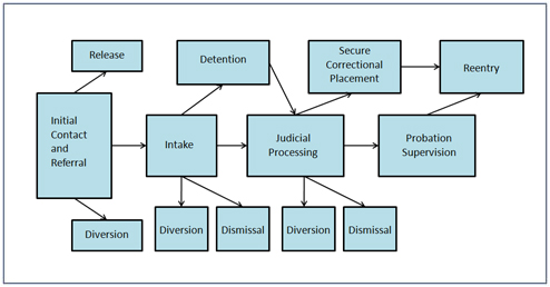 What should i do my juvenile justice report on?