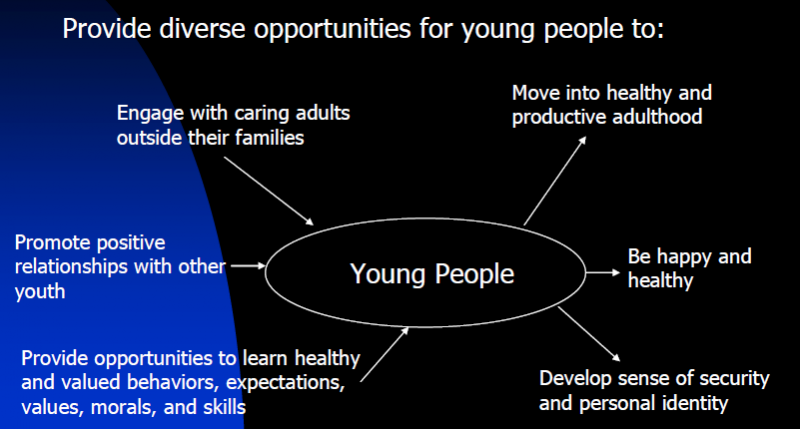This graphic describes positive diverse options for young people to engage with caring adults, promote positive relationships, provide opportunities, move into healthy adulthood, be happy and healthy, and develop sense of security.