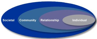 The Social-Ecological Model in Violence Prevention