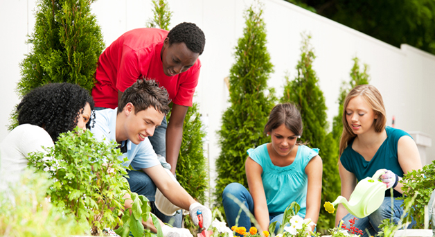 Five youth planting a garden